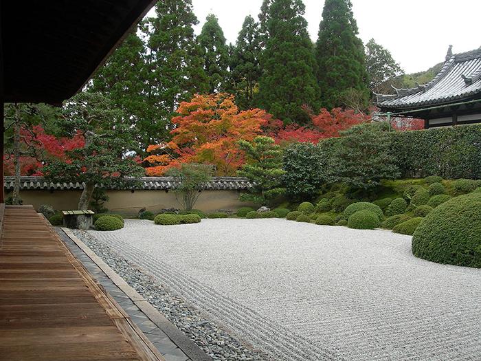 私の京都散策「一休さんゆかりの地、京田辺の歴史」を巡って。